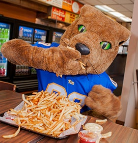 Roc the Panther eats fries at The O
