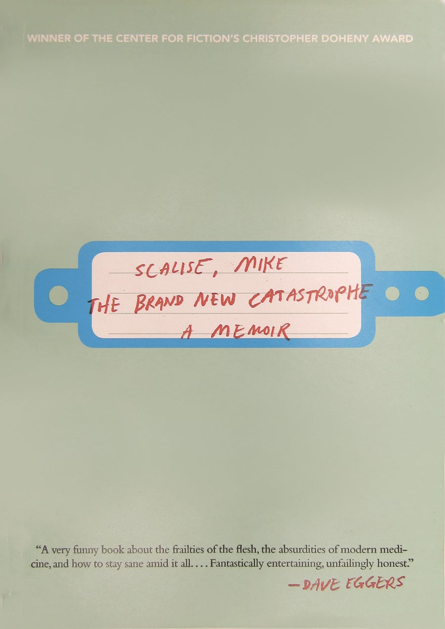 The Brand New Catastrophe book cover
