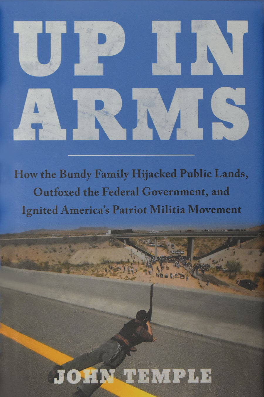 Cover of John Temple's nonfiction book Up in Arms