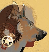 Illustration of dog thinking