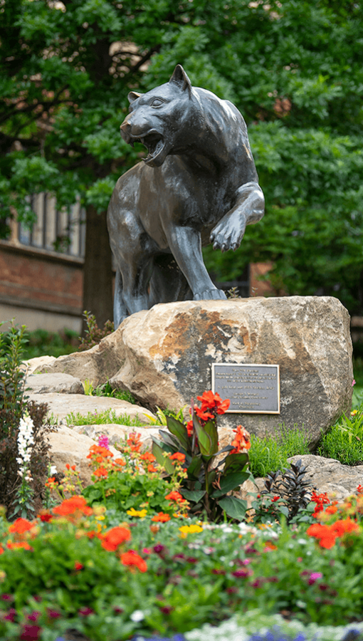 Panther statue with orange, yellow, pink, red, purple and white flowers below
