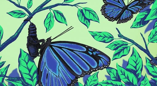 illustration of blue butterflies among green leaves