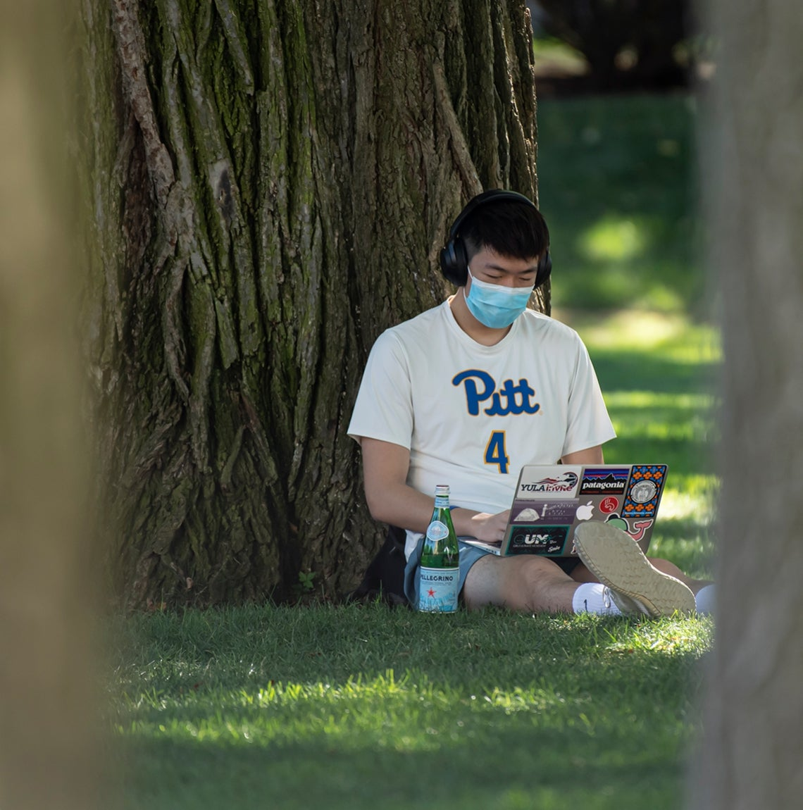 Masked student in Pitt athletic shirt sits in grass and leans against tree while working on his laptop